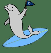Dolphin Surfboard